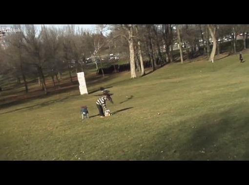 Орел пытается вырвать ребенка в Монреале!