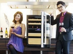 Холодильник для хранения винной коллекции