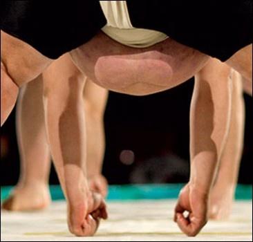 В последней схватке побит вечный рекорд сумо