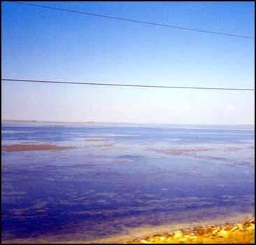 Экстремал обойдет Азовское море на руках