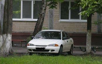 В Киеве стартует акция «Свинья за рулем»