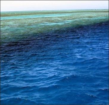 Россия утопила свой космический грузовик в Тихом океане