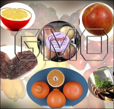 ШОК! ГМО продукты истребляют людей?!