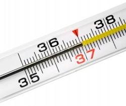 Что такое высокая температура и как с ней бороться?