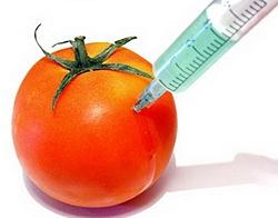 ГМО - за и против