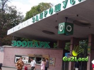 Заммэра Киева в гибели животных в зоопарке винит правоохранителей