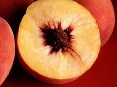 Персик спасет от рака груди!
