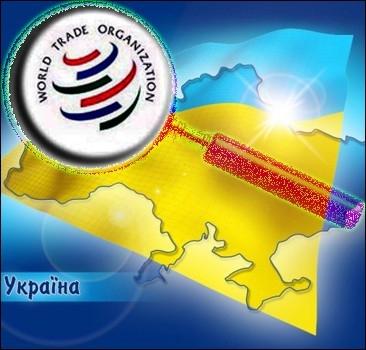 ВТО не идет на уступки Украине
