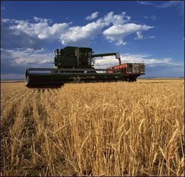 Урожай-2010 будет хуже, чем ожидали