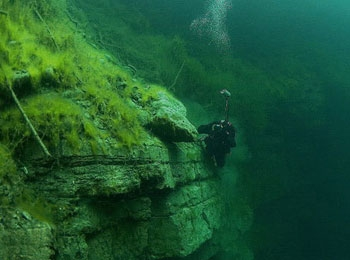Шампанское двухсотлетней выдержки нашли на дне Балтийского моря