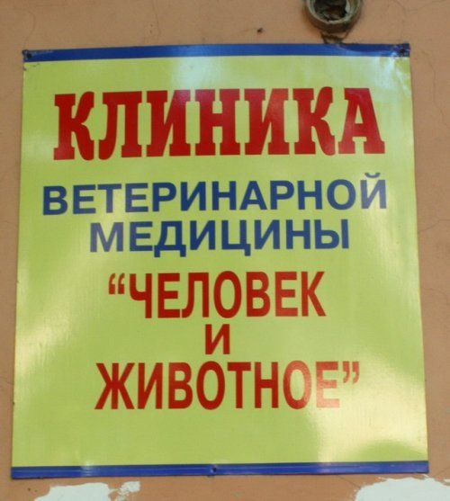 Подборка идиотских объявлений и вывесок (29 фото)