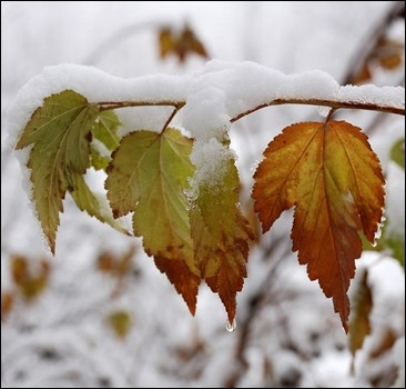 В октябре Украину завалит снегом!
