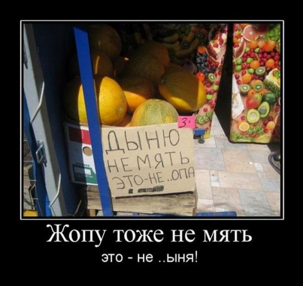 Немного позитива, демотиваторы (05-09-2010)
