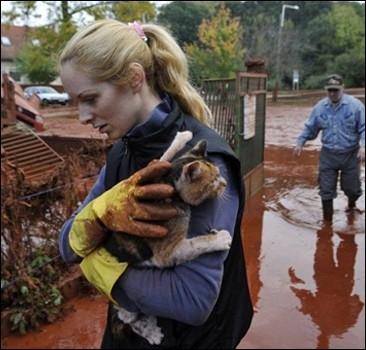 В Венгрии готовятся к еще одной эвакуации