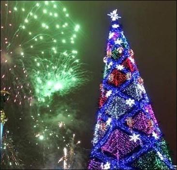 Янукович зажжет главную ёлку страны 17 декабря