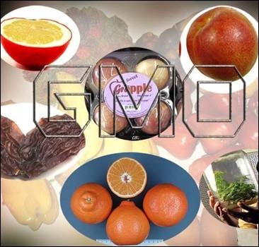 Перечень продуктов, подлежащих контролю ГМО