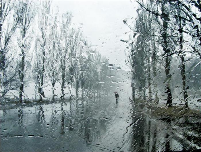 20 удивительных фактов о дожде (интересные факты о дожде).