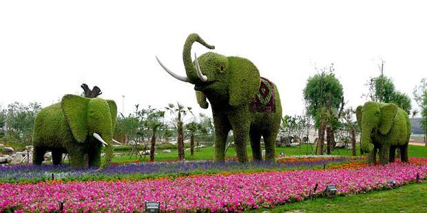 Невероятные животные из цветов в Китае