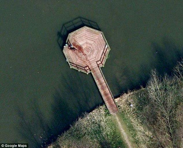 Пользователи Google Maps приняли мокрую собаку за доказательство преступления
