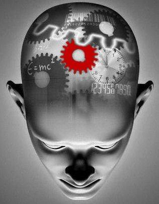 Интересные факты психологии